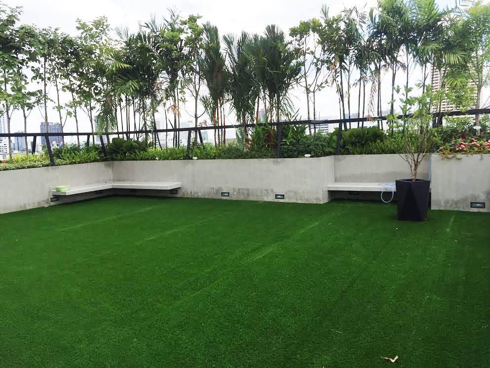 หญ้าเทียมจัดสวนบนดาดฟ้า รัชดา 36